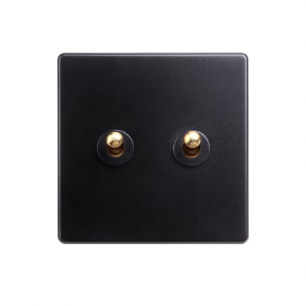 Black with Brass Toggle 2 Lever